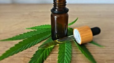 6 Benefits of CBD to Your Health and Wellbeing