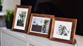 How to Decorate Your Home with Triple Picture Frames?