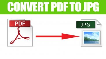 3 Reasons Why You Should Lean Toward PDFBear In Converting PDF to JPG