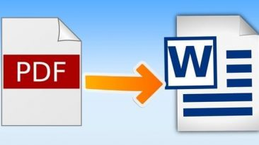 PDF To Word Conversion: PDFBear's Reliable Tools